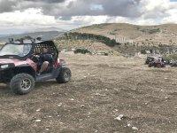 Safari in Segesta in a 2-hour buggy
