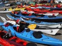 kayaks ashore