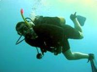Diving a Chia