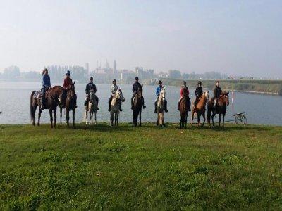 Horse ride Parco del Mincio 2 hours