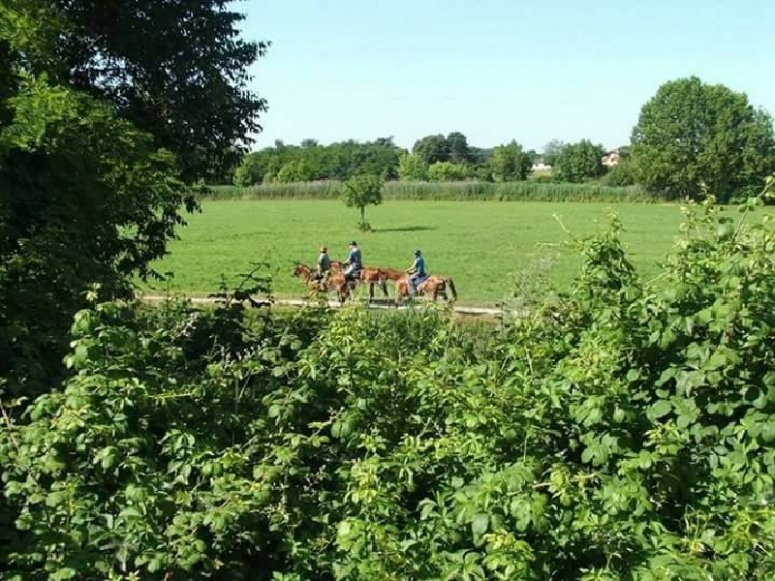 On horseback in the green fields