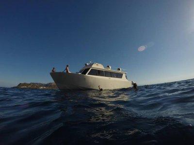 Giornata in barca tra Alicudi e Filicudi