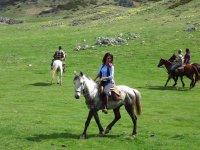 Passeggiata a cavallo e praterie