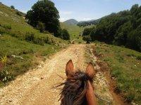 Sterrato a cavallo