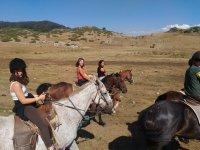 Tutti in gruppo a cavallo