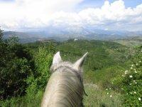 Una vista speciale a cavallo