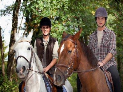 Passeggiata a cavallo a Pizzo di 2 ore