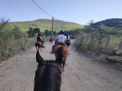 Passeggiata a cavallo a Pizzo di 3 ore