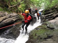 On the Torrent