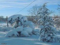 Copiosa nevicata