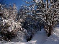 Inverni in appennino