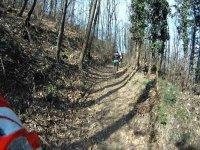 Mountain bike nel bosco
