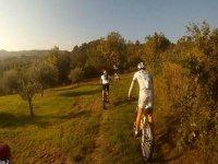 Rotte gps mountain bike