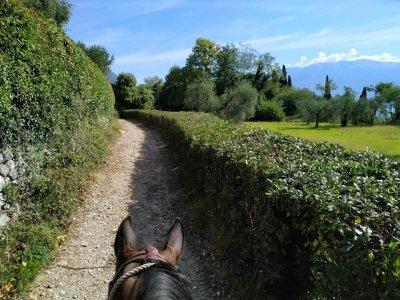 Escursione a cavallo Toscolano Maderno di un'ora