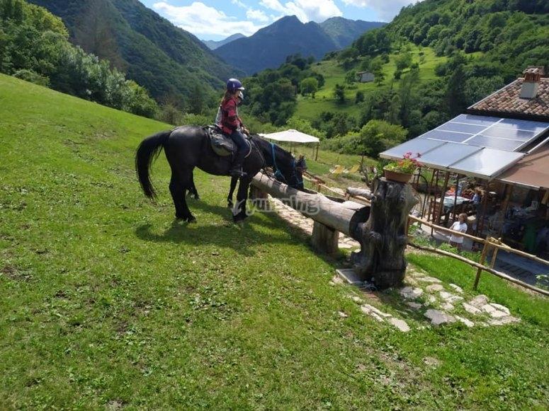 Escursione cavallo a Toscolano Maderno di due ore ...