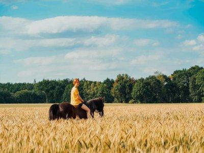 Passeggiata a cavallo ad Aprilia di 1 ora