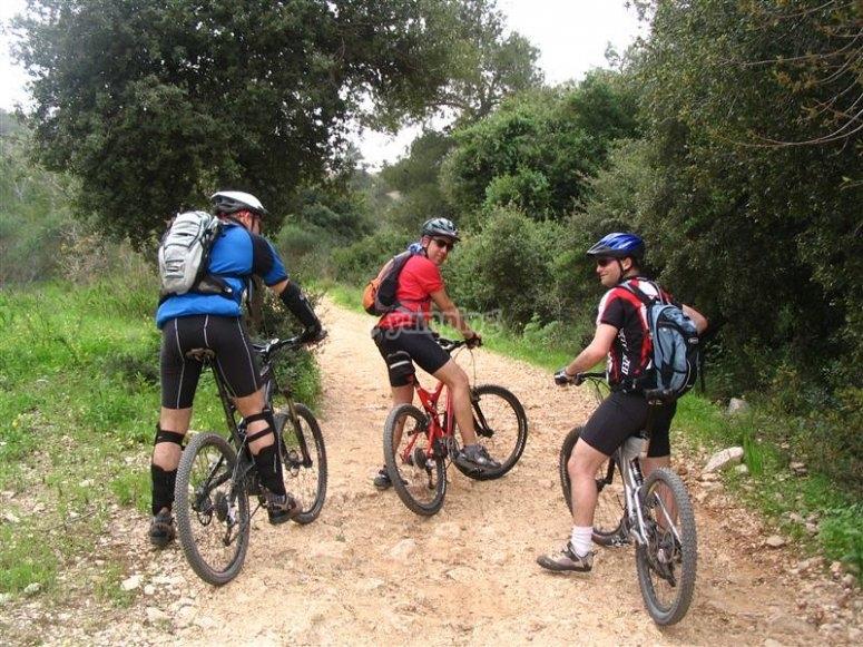 Gruppo in bici in montagna