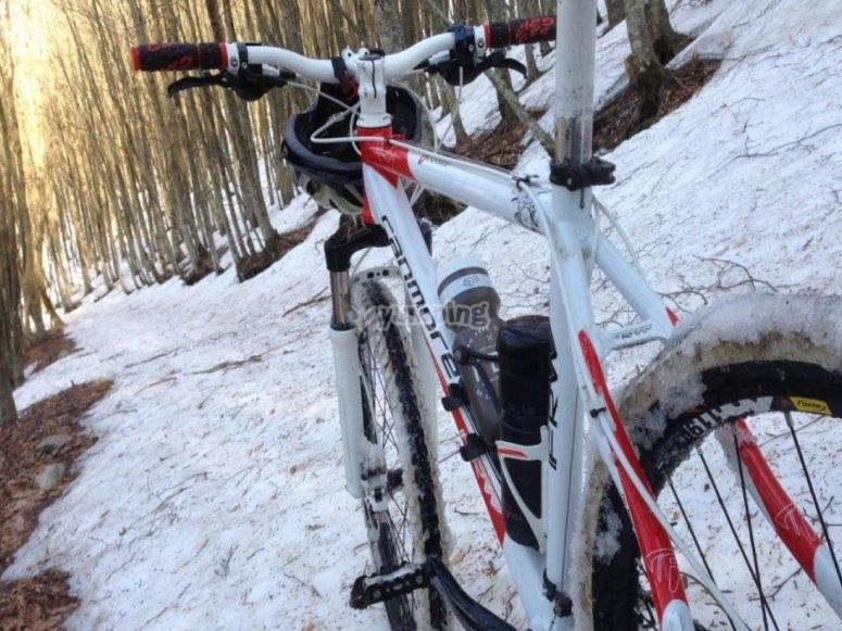 mountainb bike in inverno