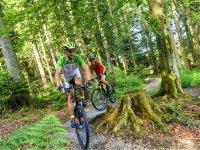 Etna mountain bike