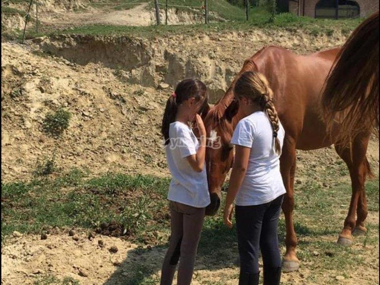 bimbe e cavalli