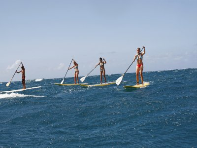 The Beach Club Paddle Surf