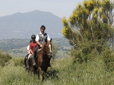 Azienda Agricola Il Poggio Passeggiate a Cavallo
