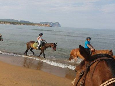 Passeggiata a cavallo a Sassari di un'ora