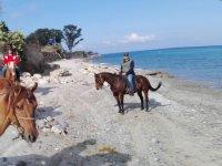 Passeggiata a cavallo a Messina di 1 ora