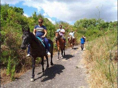 Passeggiata a cavallo a Basicò di 45 minuti