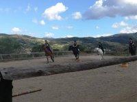 Lezione di equitazione a Basicò di 30 minuti