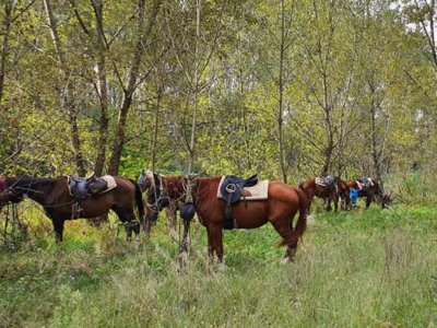 On horseback in Robecchetto for 2 days with a sleeping bag