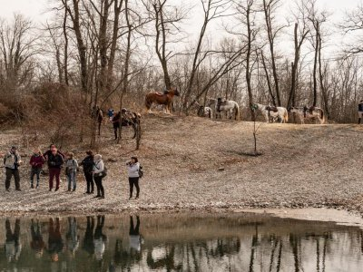 On horseback in Robecchetto for 2 days with overnight stay