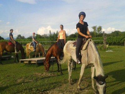 A cavallo a San Giorgio della Richinvelda 2 ore