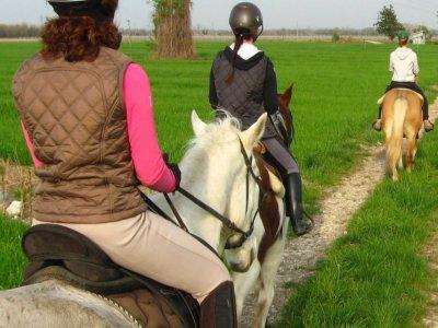 Passeggiata a cavallo a San Giorgio di 4 ore