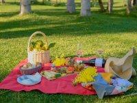 Il picnic sul prato