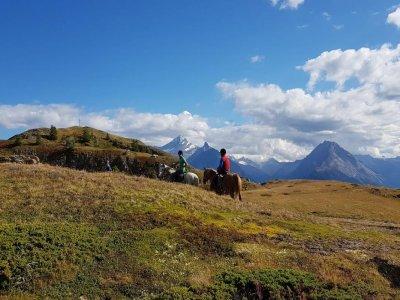 Passeggiata a cavallo a Vetan 4 ore