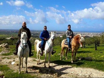 Passeggiata a cavallo a Trapani di un'ora