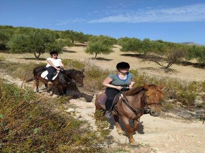 Passeggiata a cavallo a Trapani di due ore