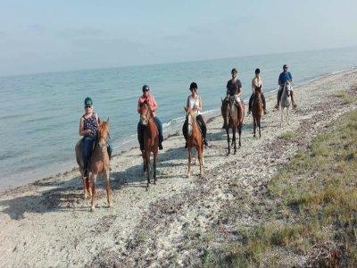 Trekking equestre a Trapani di due giorni
