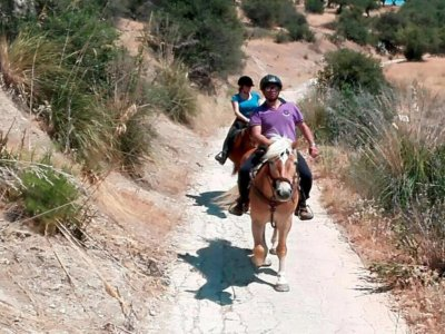 Passeggiata a cavallo a Trapani di quattro ore