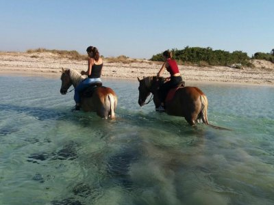 Horse ride in Porto Cesareo of 30 minutes