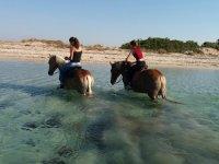 Passeggiata a cavallo a Porto Cesareo di 30 minuti