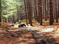 nei boschi dell'entroterra