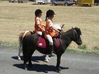Concorso Endurance Pony