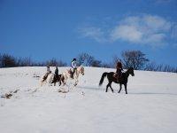 T.E.  sulla neve
