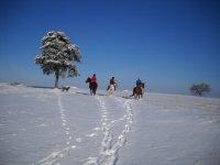 Turismo equestre d'inverno