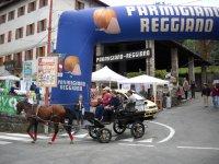 Servizio navetta -Festa del Parmigiano Reggiano