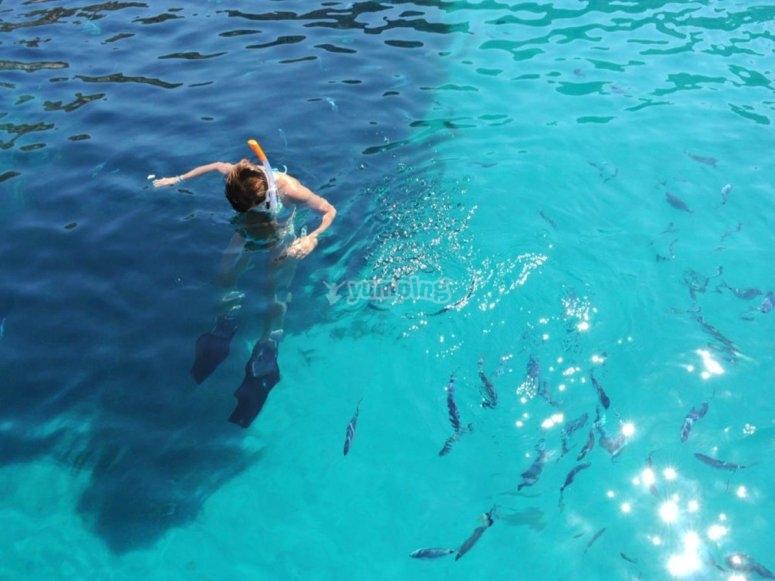 swim break in the Ligurian sea