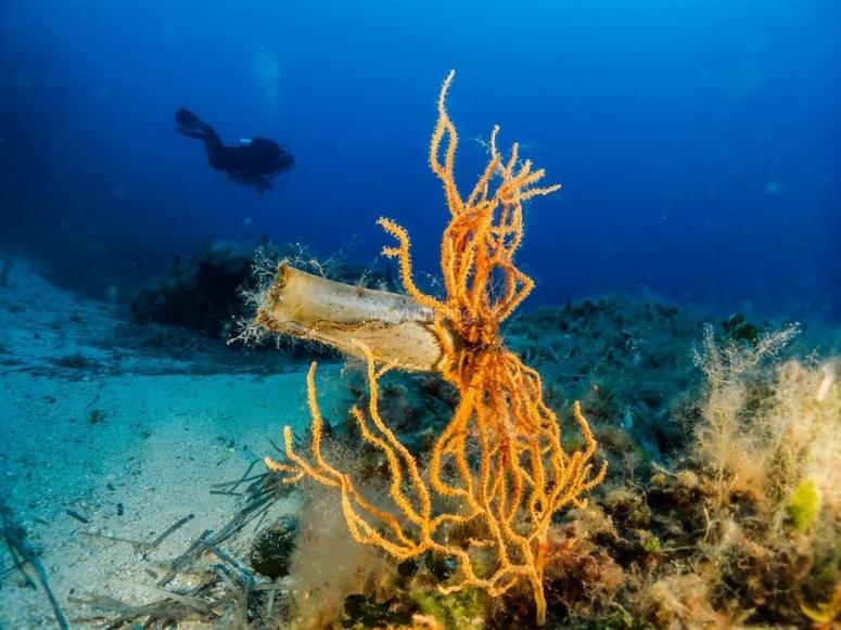 sub under water