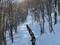 Escursioni Per Singoli E Gruppi